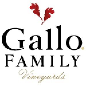 GFV 2015 Logo