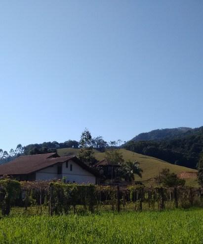ascurra-vinicola-mondini-1