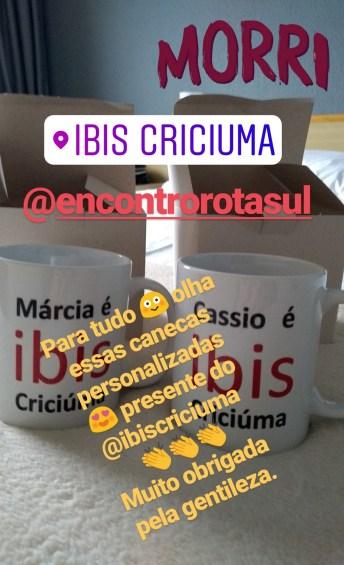 mimos-ibis-criciuma-2