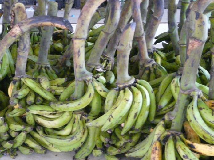 Feira da Banana