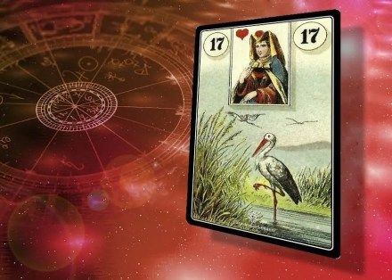 sibille lenormand 17: Cicogne