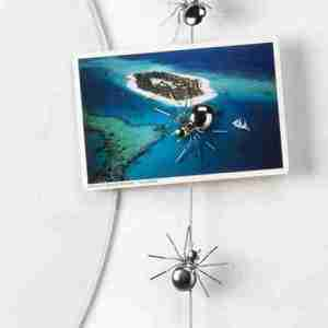 Cavo magnetico ragno