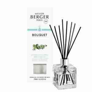 Bouquet Parfumé Cube Fraicheur d'eucalyptus