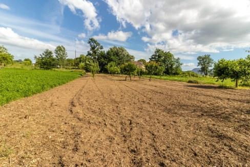 Vista casa di campagna Pratella (16)