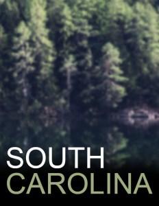 South Carolina Popup