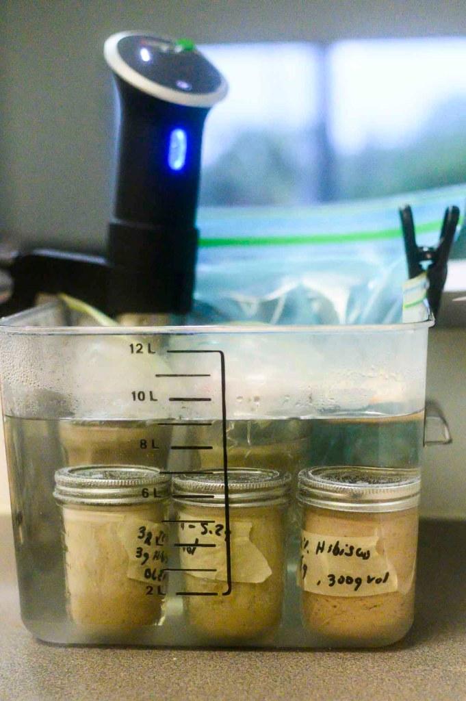 Hibiscus Tea Creme Brulee in Sous Vide Water Bath