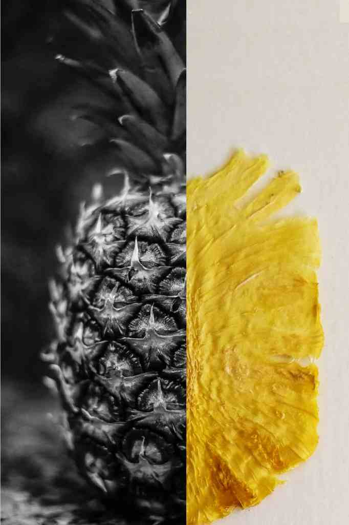 Pineapple and pineapple chip together