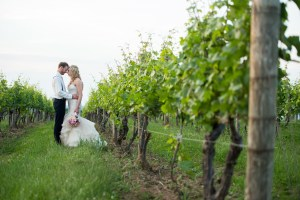 Couple in the Vineyards, Wedding Ceremonies and Receptions at Casa Larga Vineyards