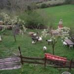 casa rural con jardín