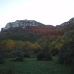 valle de arce