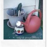Insetticidi naturali per il giardino: la soluzione al peperoncino