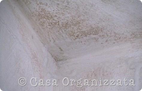 Trattamento naturale contro la muffa sui muri, prove d'uso in diretta