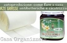 Come fare in casa medicazioni cicatrizzanti e antisettiche con miele di Manuka