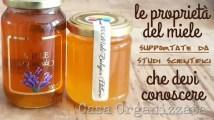 Le proprietà del miele che devi conoscere (supportate dalla scienza)