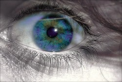 Casart coverings eye photos