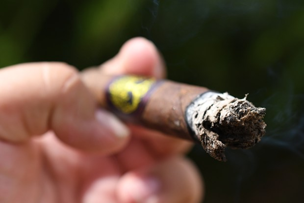 Ventura Cigar Company Archetype Axis Mundi