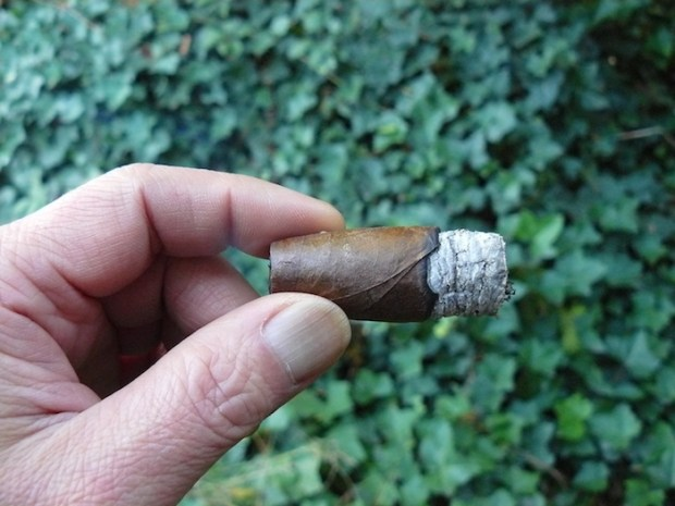 enca Cigars Happy I Torpedo Natural