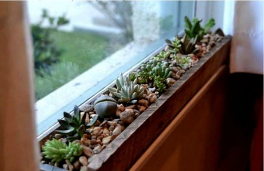 thehomeissue_windowsill002
