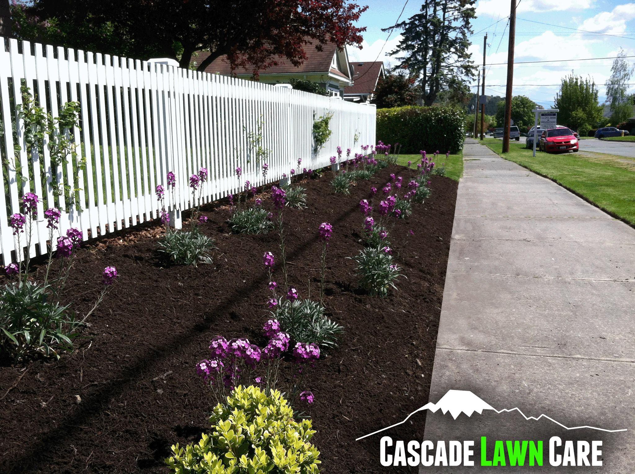 Unique Landscaping and Maintenance Services