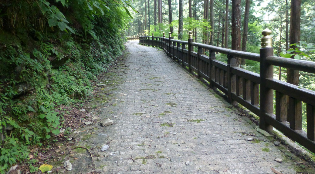 Hilly Path