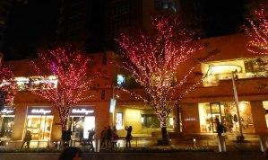 Roppongi Tree Lights