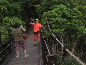 This couple brought their cat hiking with them and posed for several pictures on the Hashidate Suspension Bridge.