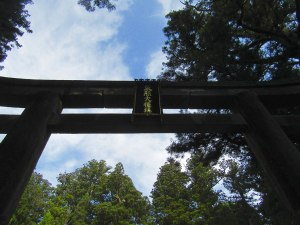 The torii leading into Tōshō-gū