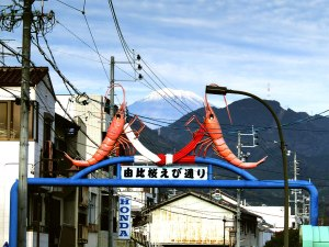 """A """"decorative"""" gate in front of Yui Station, showing the sakura-ebi (cherry shrimp) that are famously found in Yui's part of Sugura Bay"""