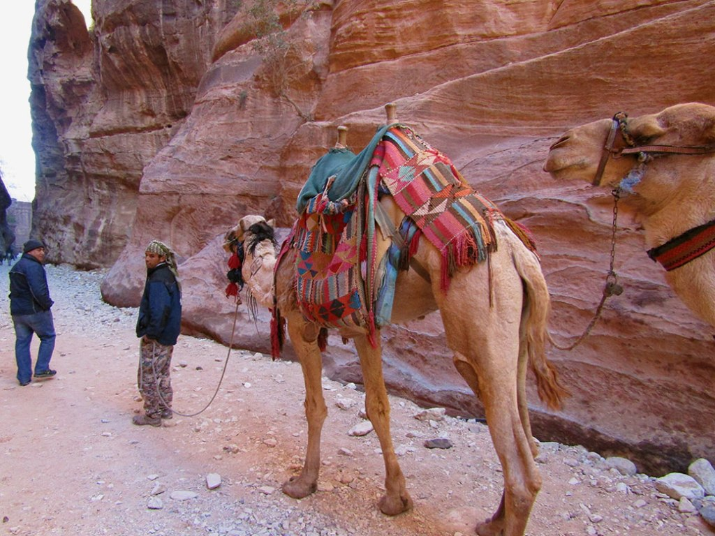 The local B'doul tribe make their living selling souvenirs and offering donkey or camel rides inside Petra.