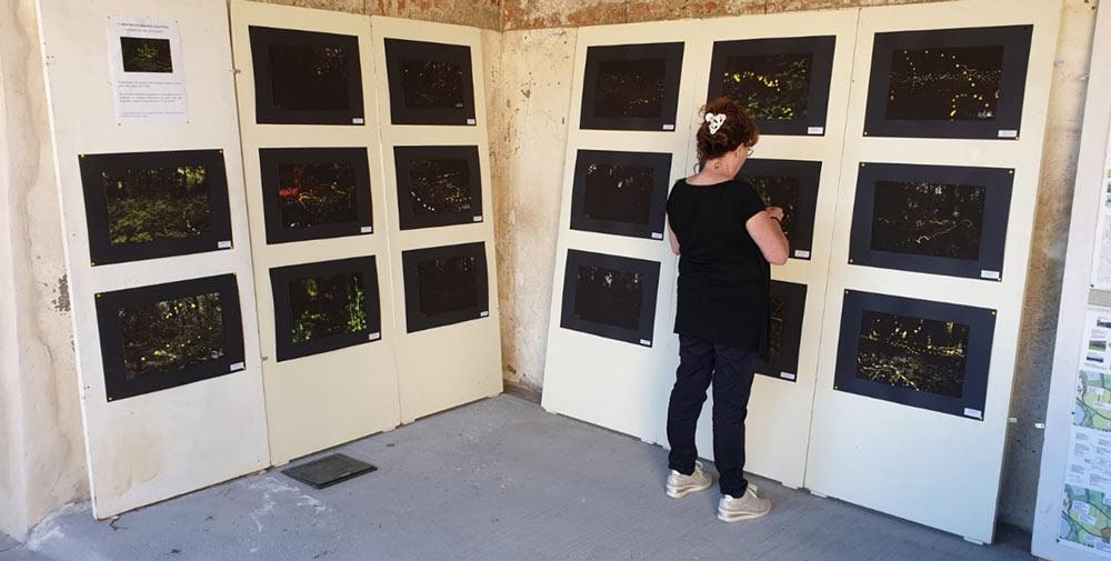 """31 maggio: """"Inaugurazione Mostra Fotografica Collettiva sulla Lusiroeula del Parco delle Cave"""""""