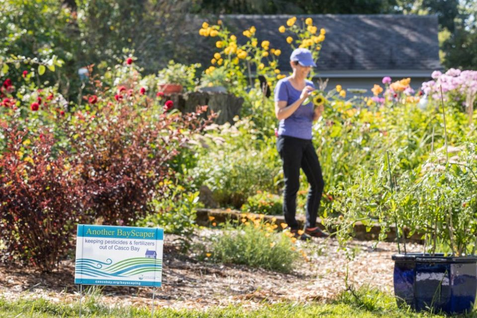 South Portland Pesticide Ordinance