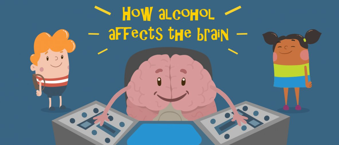 Learn How Alcohol Affects The Brain Casco Bay Can Casco Bay Can