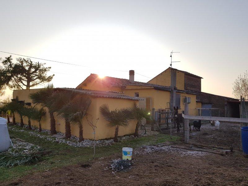Anguillara Veneta Casa Con Giardino E Terreno A Padova In