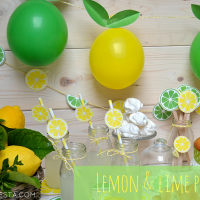 Festa a tema limoni & lime