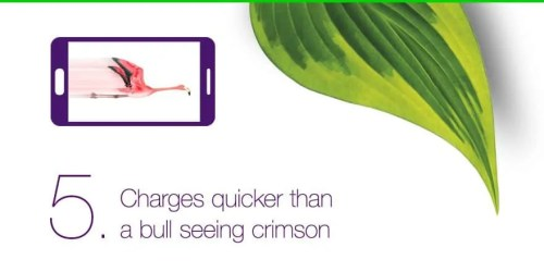 Casey Palmer and TELUS Mobility Present — 5 Things You NEED to Know About the Samsung Galaxy S6 — 5. Charges Quicker than a Bull Seeing Crimson!