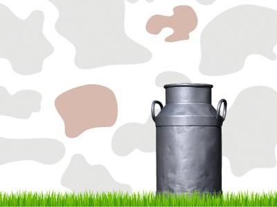 Website Cash Cow Internet vernieuwd