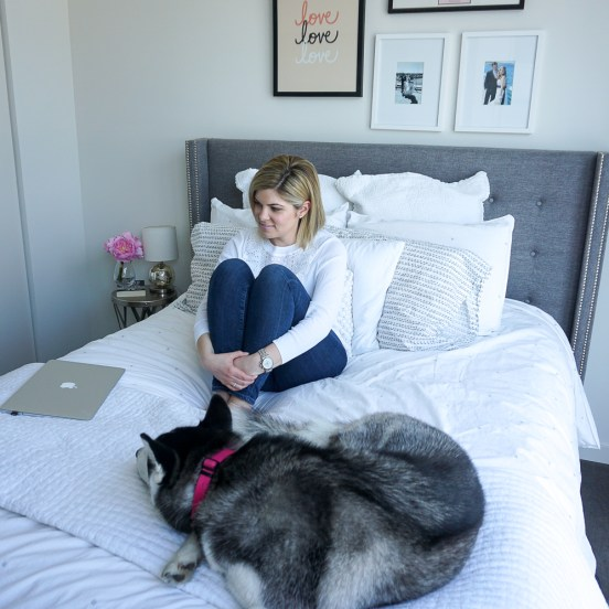 blogger and pomsky puppy