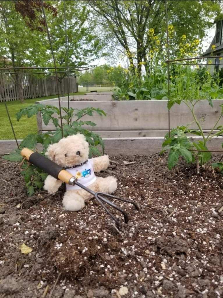 Time to display some gardening