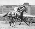 Citation was the first horse to earn $1 million