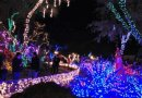 7 Best Holiday Decorations in Las Vegas