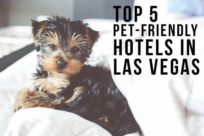 Best 5 Pet-Friendly Hotels in Vegas