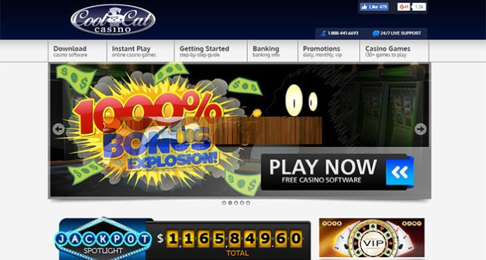 Cool Cat Casino Payout Complaint – Resolved