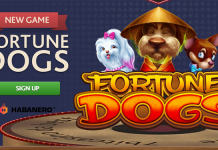 Weekend Bonus Bulletin, Get Free Spins + Check Out Two New Slots!