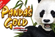 New Panda's Gold Release, Get Special Bonus Offers to Experience
