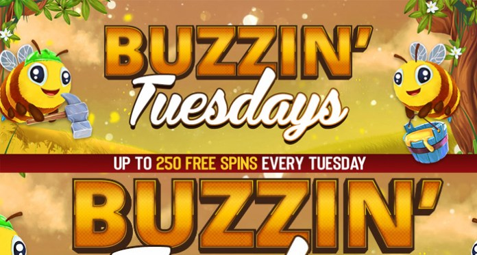 Claim up to 250 Free Spins Every Tuesday at Vegas Crest Casino