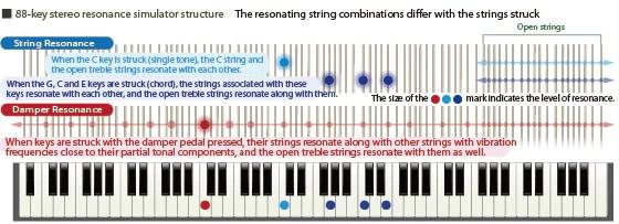 โครงสร้างตัวจำลองเสียงสั่นสะเทือนแบบสเตอริโอ 88 คีย์ องค์ประกอบของสายที่สั่นสะเทือนจะมีความแตกต่างกันเมื่อมีการเคาะลงบนสาย