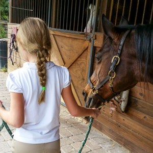 taking care of horses at riding lessons