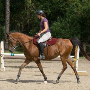 Instructor schooling horse during the morning ride