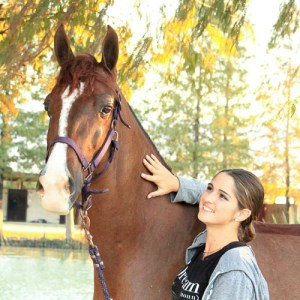 large chestnut Half-Arabian, Popular Romance