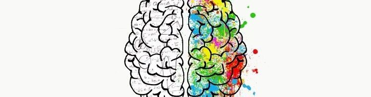 Illustration of a brain; the left side is depicted as scientific and the right artistic